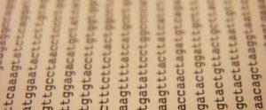 Photo of genetic code